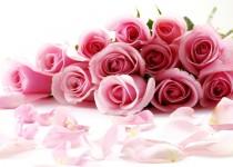 Bal des Roses